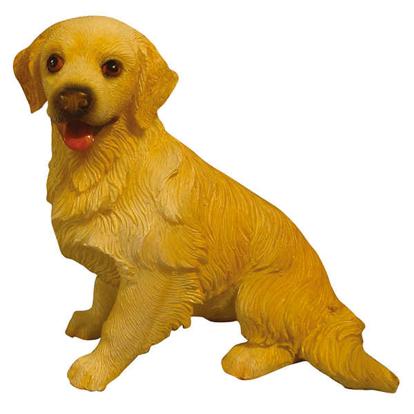 CHIEN GOLDEN (RETRIEVER)