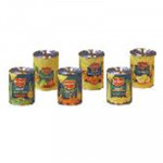 LOT DE 6 CONSERVES LEGUMES FRUITS