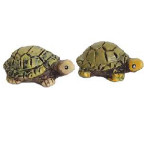 LOT DE 2 TORTUES