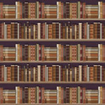 DECOR FOND DE BIBLIOTHEQUE (P116)