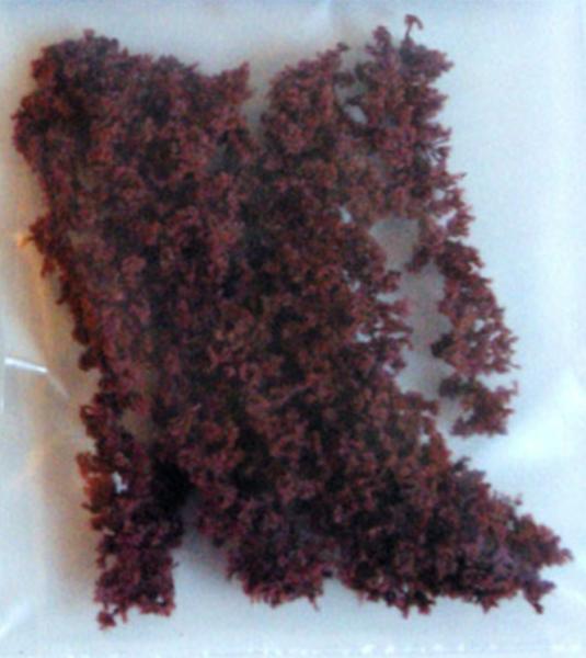CHENILLE COTON RONDE ROUILLE (14mm)