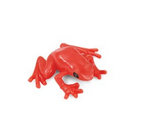 MINI GRENOUILLE ROUGE