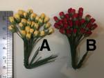 Fleurs ou Feuilles_Tiges seules