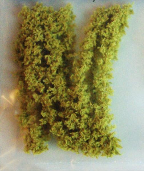 CHENILLE COTON RONDE (14mm)